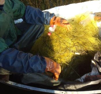 Протягом тижня порушники завдали 17 тис. грн збитків, - рибоохоронний патруль Харківщини