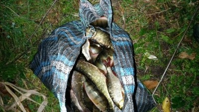 На Червонооскільському водосховищі порушники завдали майже 14 тис. грн збитків