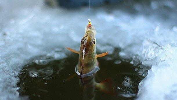 Зимова риболовля – секрети успішного лову риб