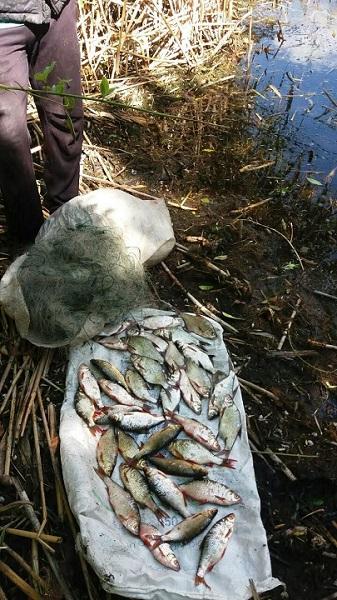 Порушник завдав більше 4 тис. грн збитків, - Харківський рибоохоронний патруль