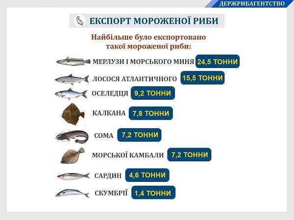 За вісім місяців 2019 року Україною експортовано 287 тонн мороженої риби на понад $786 тис., - Держрибагентство